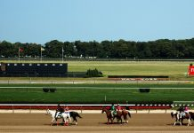 bet belmont stakes